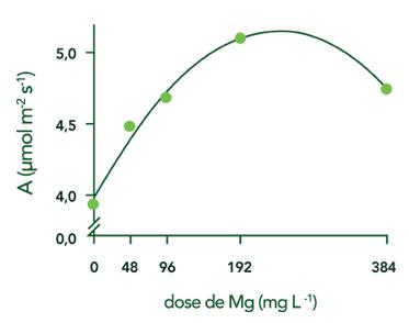 Gráfixo taxa assimilação CO2